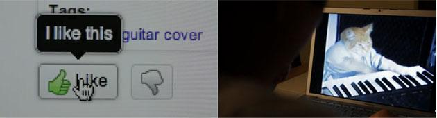 Website Video Parody
