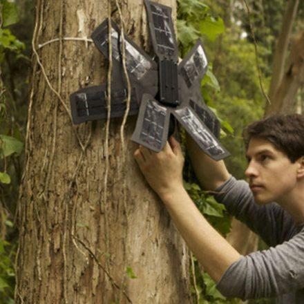 rainforest-equipamento