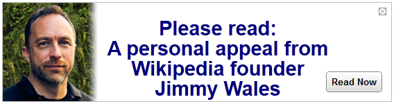 jimmy-wales-wikipedia-screen-shot