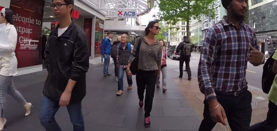 catcall-auckland