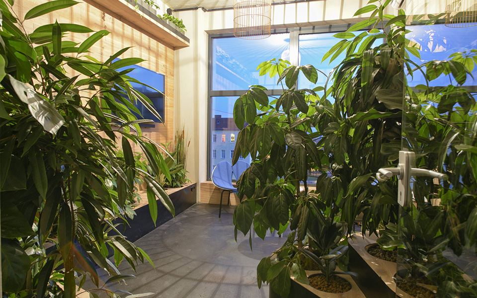 Uma das diversas salas de reunião, o Green Room é um espaço para conversar rodeado de plantas. O áudio é de passarinhos e uma gaiola vazia serve como molde luminária