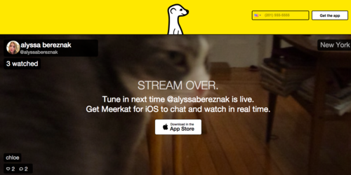 meerkat-app-tela2