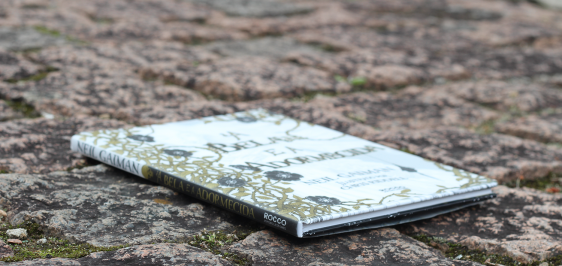 Resenha de A Bela e a Adormecida, de Neil Gaiman e Chris Riddell