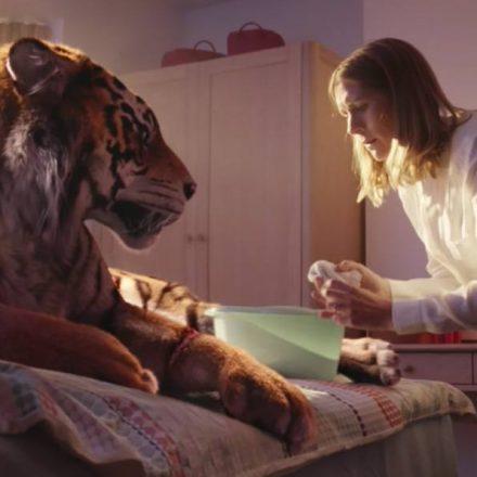 WWF Tigre