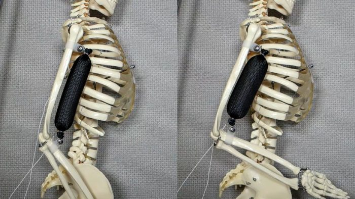 3D-printed-synthetic-muscle-three-times-stronger-designboom-newsletter