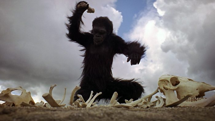 2001-A-Space-Odyssey-The-hominid-grabs-a-large-bone-and-begins-pounding-the-ground-and-other-bones-around-him