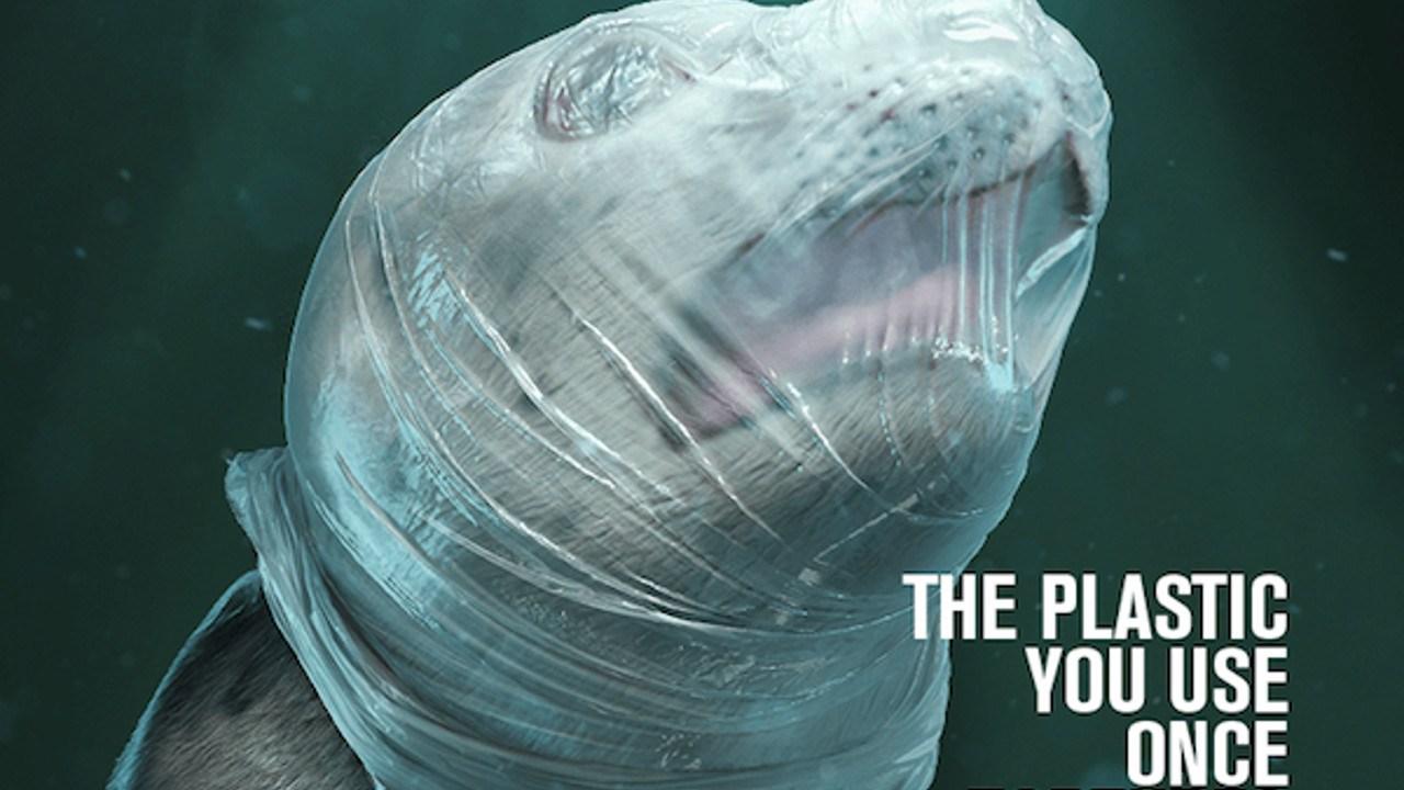 SeaShepher-tortura-plastico-capa