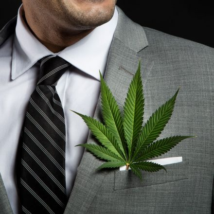Socil-Medi-Running-your-CannaBusiness