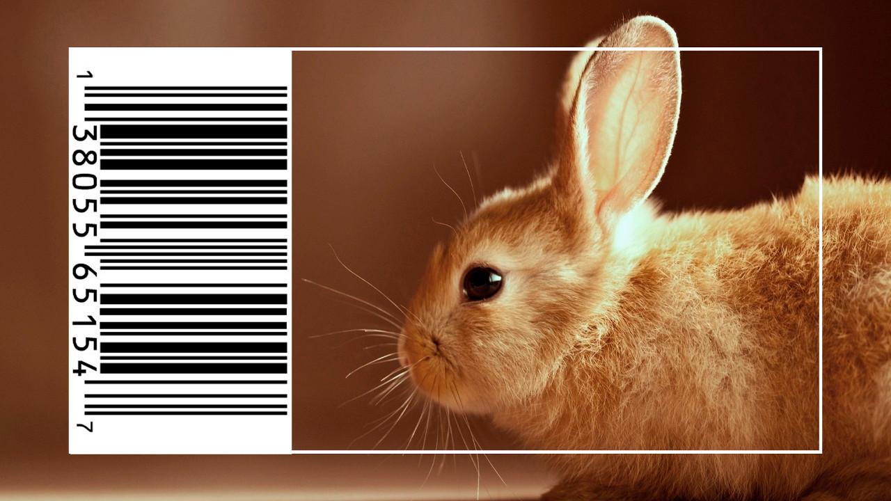 cosmeticos-testes-animais