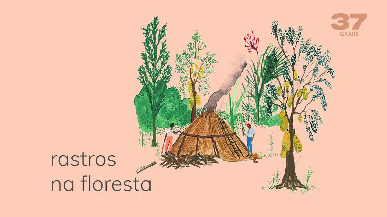 37 Graus – Rastros na floresta
