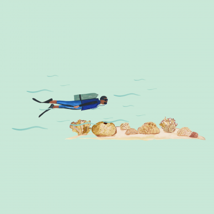37 Graus – Maré baixa
