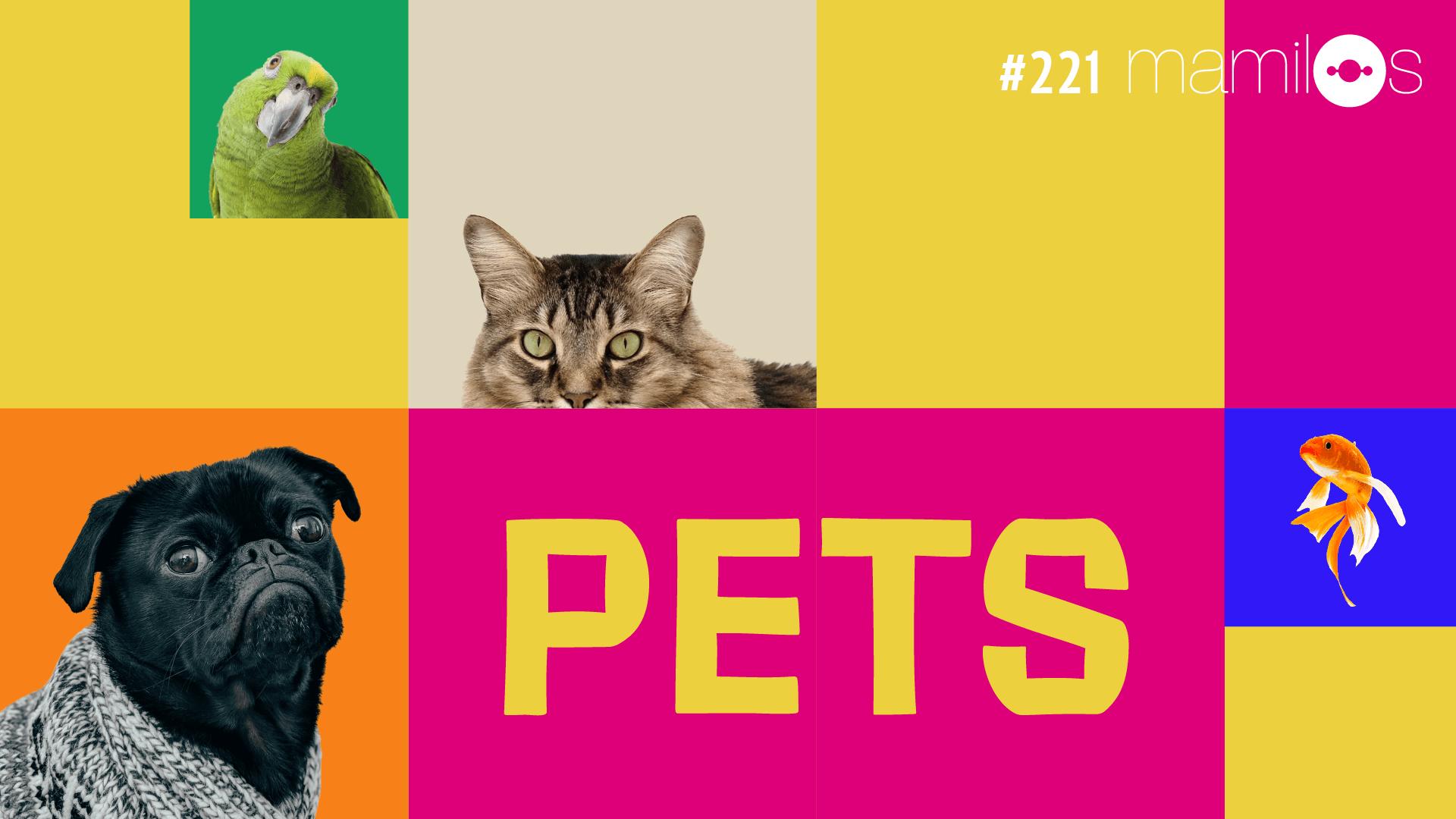 Mamilos #221 – Pets