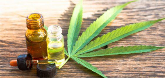 cannabis-medicinal-aprovada-brasil