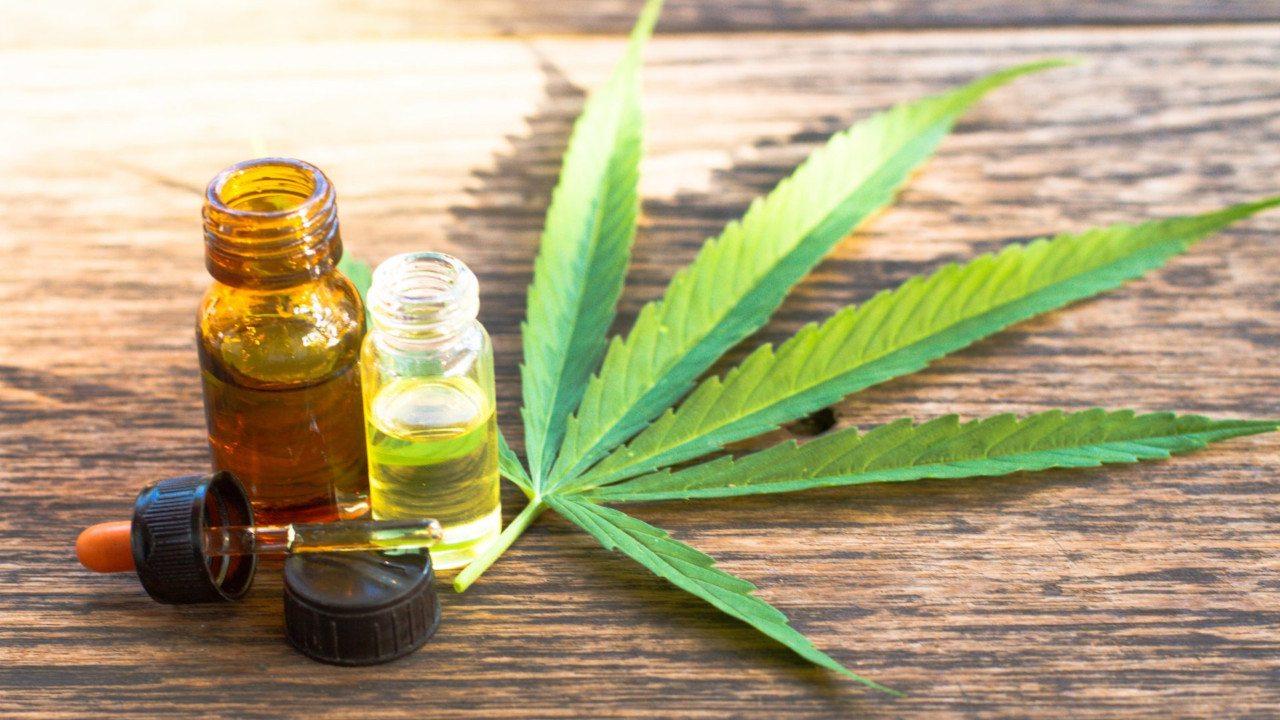 Resultado de imagem para foto de produtos a base de cannabis