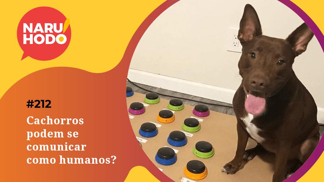 Naruhodo #212 – Cachorros podem se comunicar como humanos?