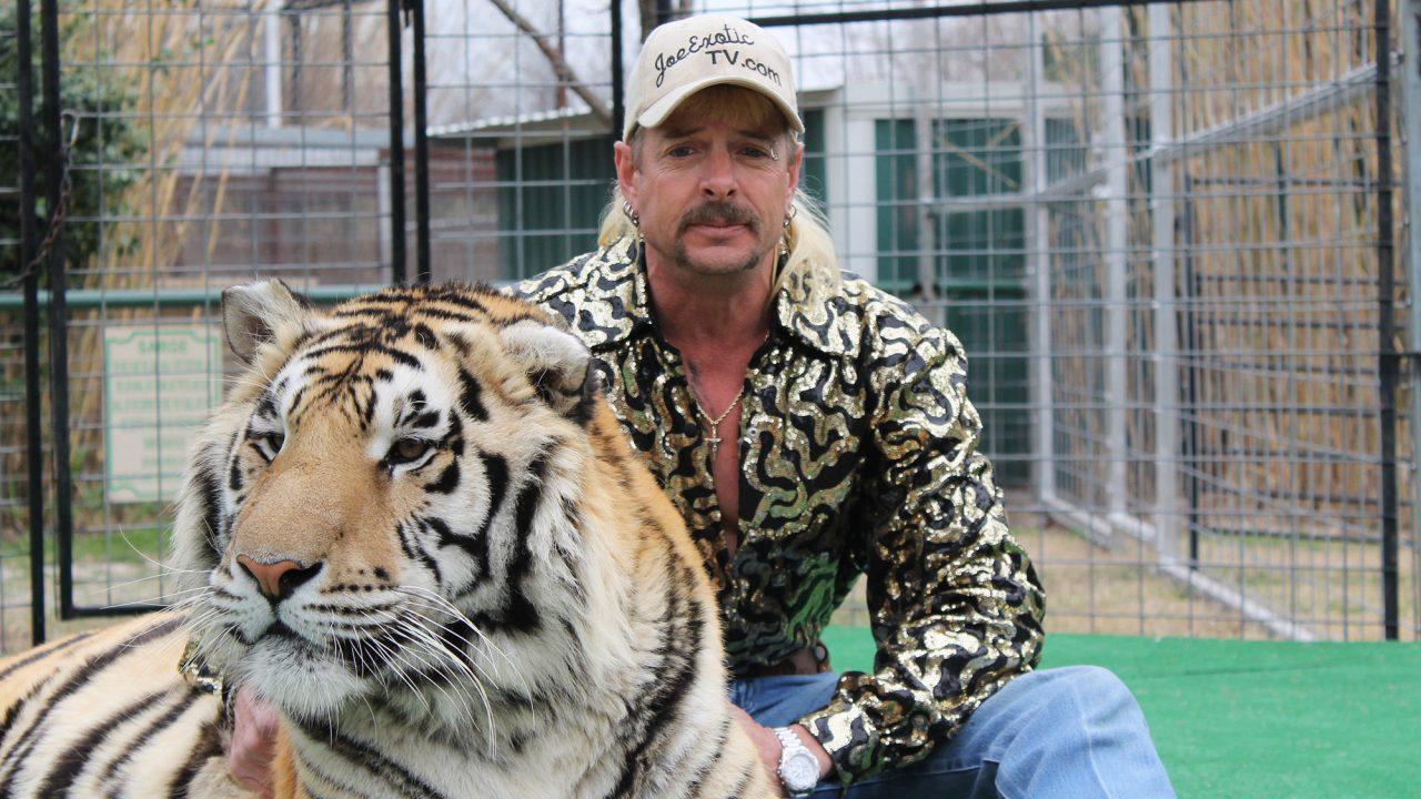 Tiger-King-7