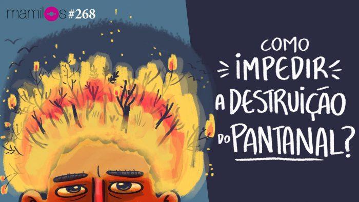 Mamilos #268 – Como impedir a destruição do Pantanal?