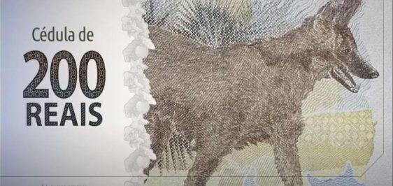 cedula-200-lobo-guara