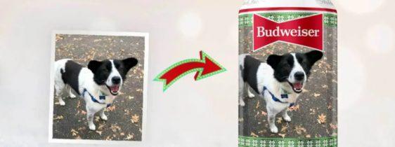 budweiser-pet-natal