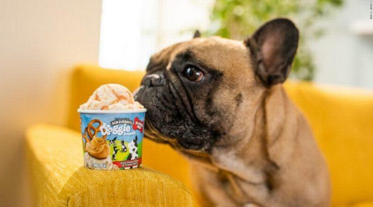 Ben & Jerrys-Doggie Desserts