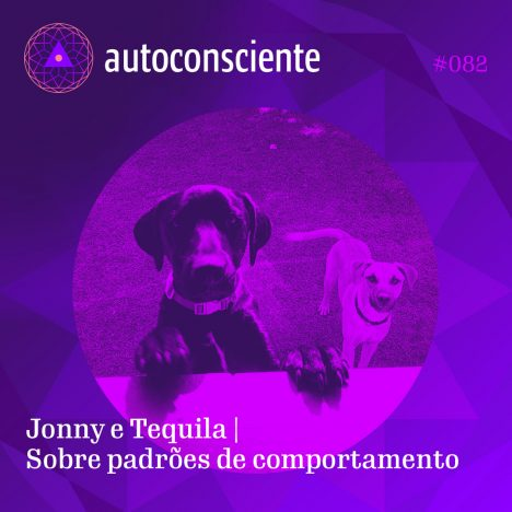 Capa - Jonny e Tequila   Sobre padrões de comportamento