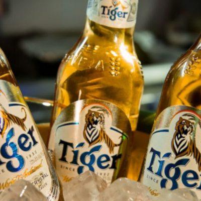 tiger-grupo-heineken