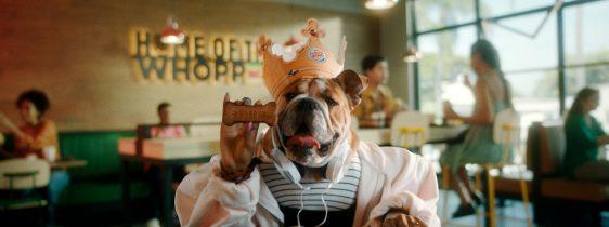 burger-king-Dogpper