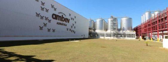 ambev-cervejaria-carbono-neutro