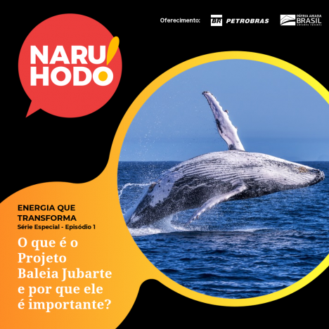 Capa - Extra - Especial ENERGIA QUE TRANSFORMA - Ep. 1: O que é o Projeto Baleia Jubarte e por que ele é importante?