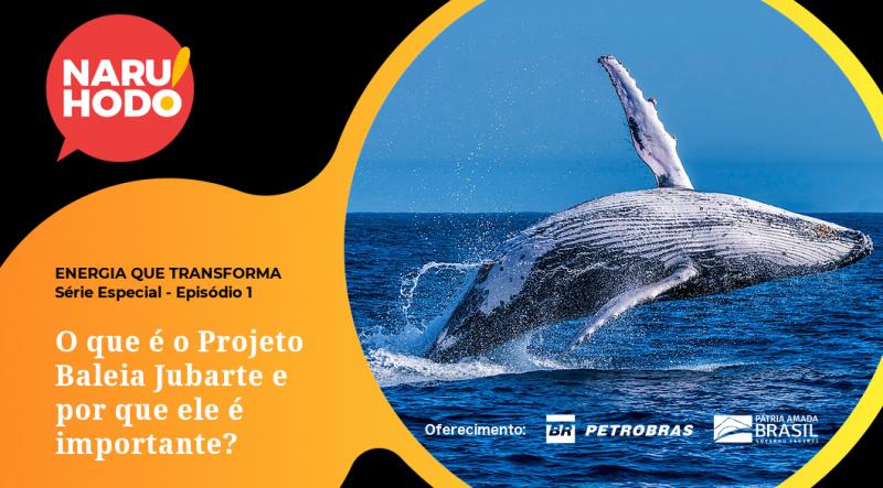 Naruhodo Extra – Especial ENERGIA QUE TRANSFORMA – Ep. 1: O que é o Projeto Baleia Jubarte e por que ele é importante?